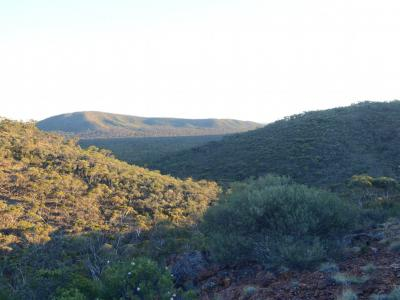 Hills of Helena and Aurora Range (Bungalbin).  Photo by Amanda Keesing