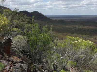 View from top of Range looking NE.