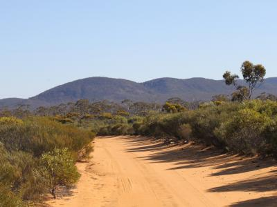 Closer view of Bungalbin Hill from track travelling from the south through sandplain.