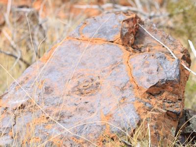 BIF (Banded Ironstone Formation) rock.
