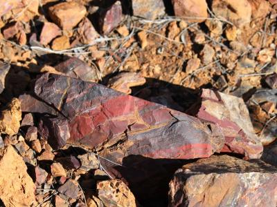 Small piece of Jaspilite BIF rock (Jaspilite = the red bands).