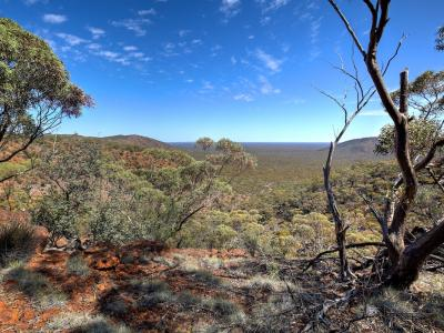 View from Range, October 2015.  Photo by Rob Neave