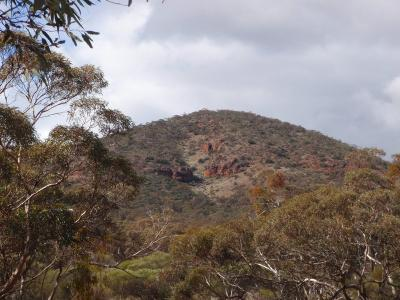 View looking up on to Range, north west of Bungalbin Hill.